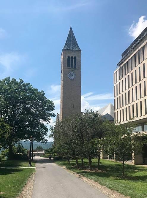 Корнеллский университет летом