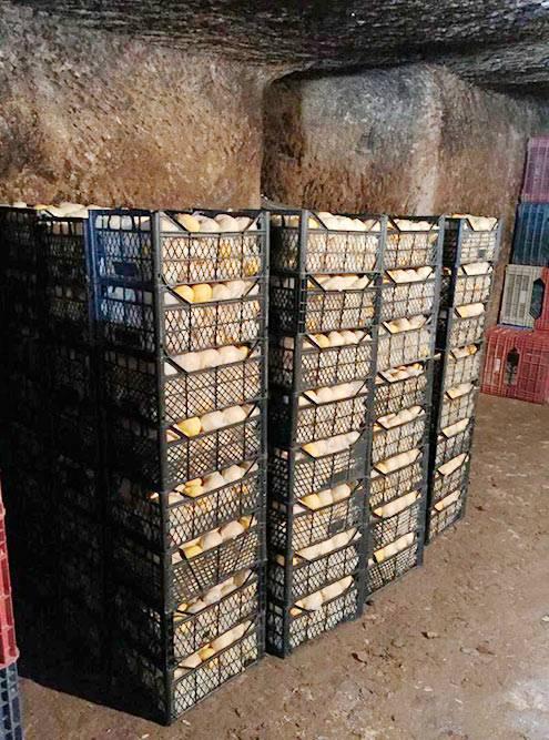 Здесь вручную моют, сортируют лимоны ихранят их — до4млн коробок. Снаружи склад выглядит какзакрытые двери вневзрачную пещеру