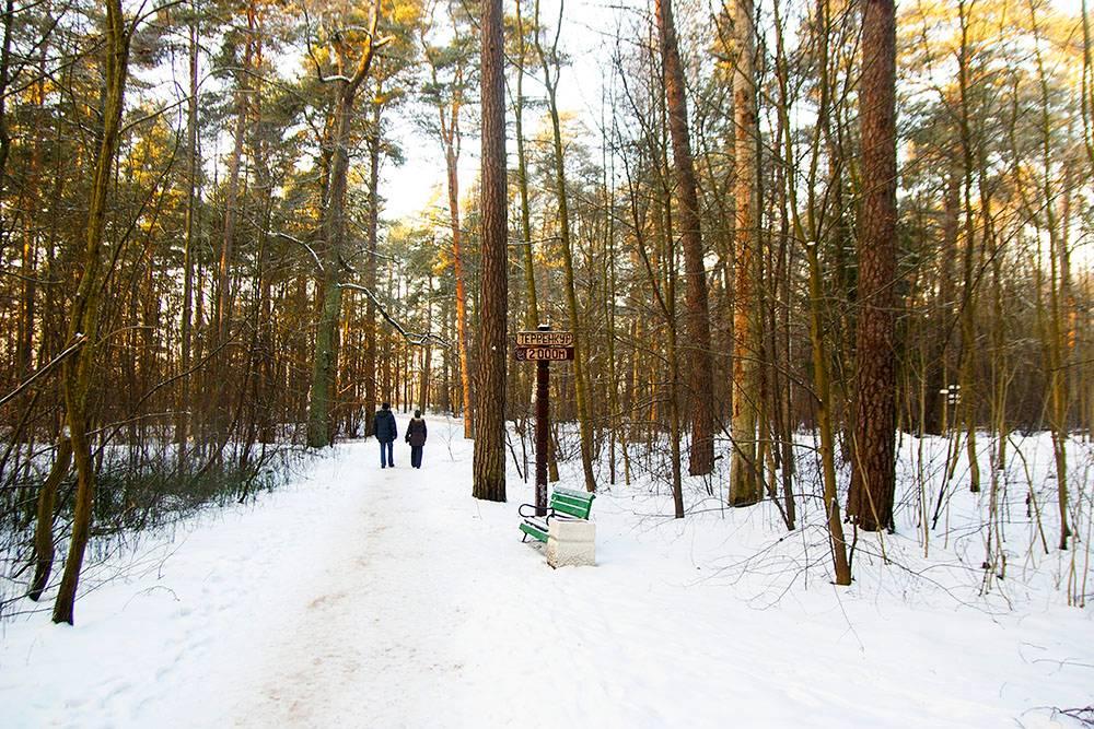 По территории курорта проложен терренкур — пешеходный прогулочный маршрут