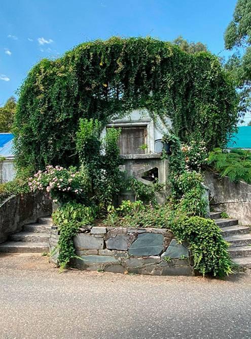На территории сада полно заброшенных и даже жилых домиков