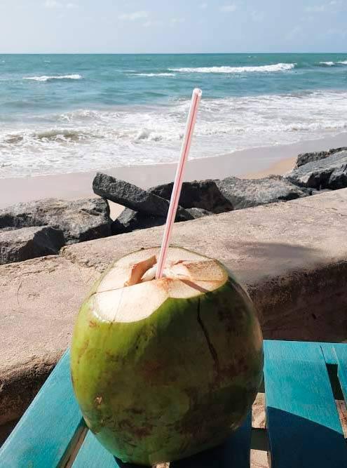 Кокосовая вода утоляет жажду гораздо лучше любого фруктового сока