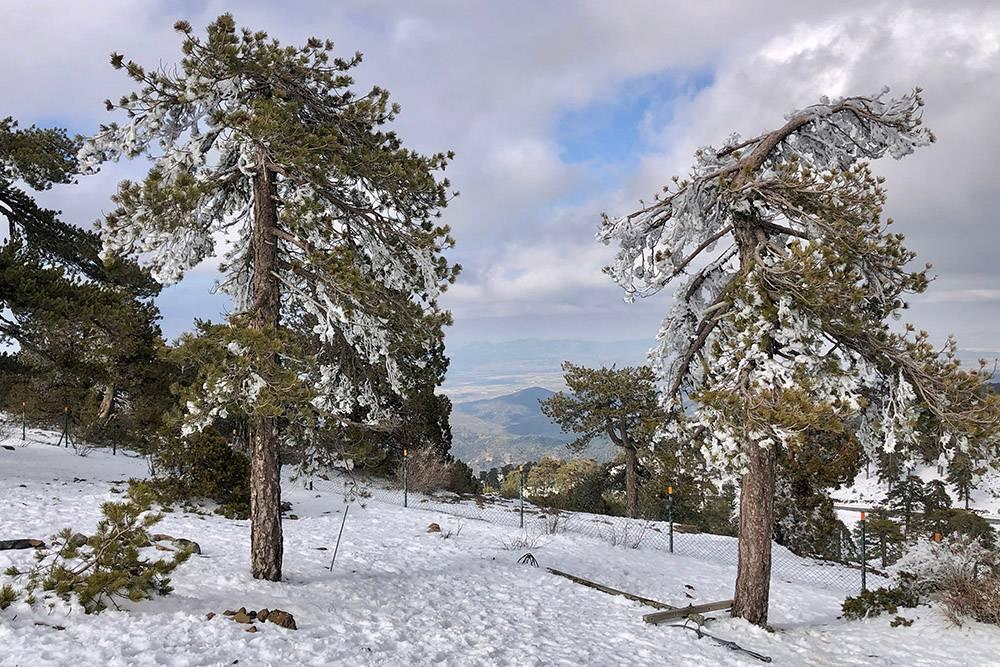Зимой в горах выпадает снег. Обычно он лежит на Новый год, но в 2021году задержался и повалил в конце марта и начале апреля. Я сделала эту фотографию 28 марта