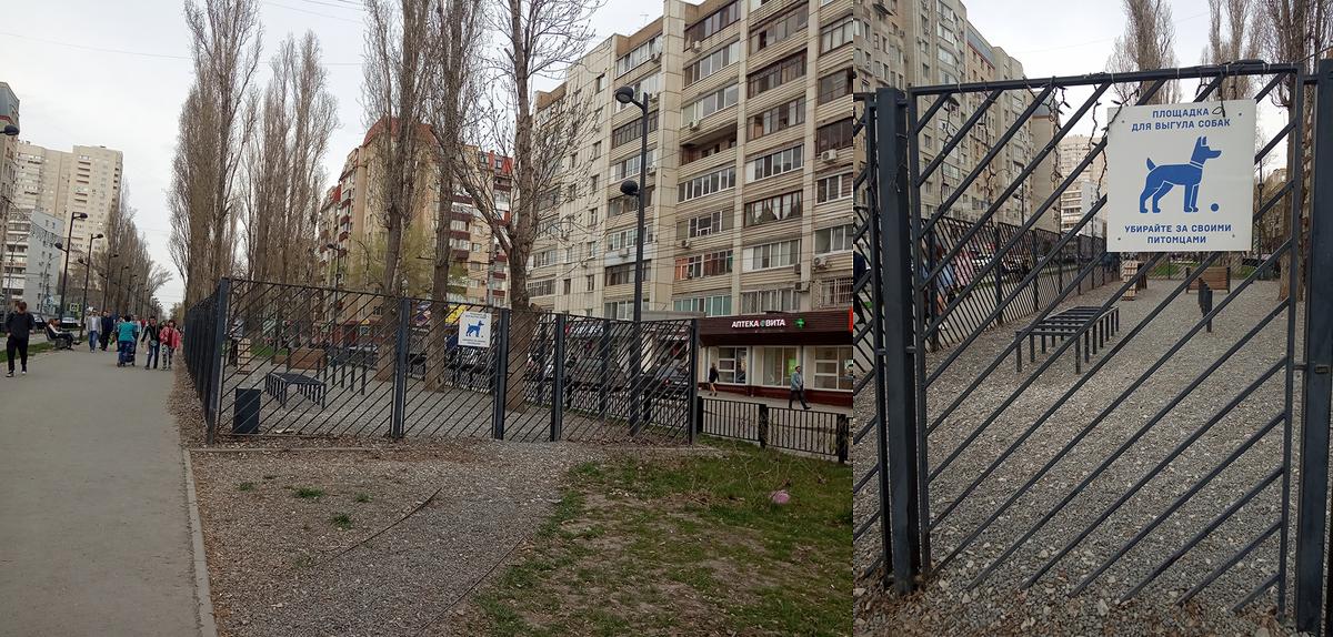 В Саратове площадка для выгула собак выглядит вот так: огорожена забором, обозначена информационной табличкой, посыпана гравием. От моего дома до такой площадки 3 км