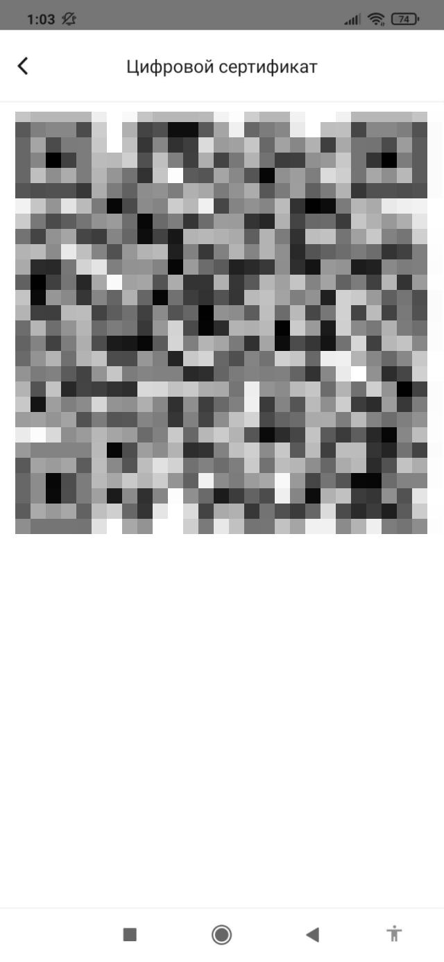 По ссылке «QR-код сертификата» открывается просто код