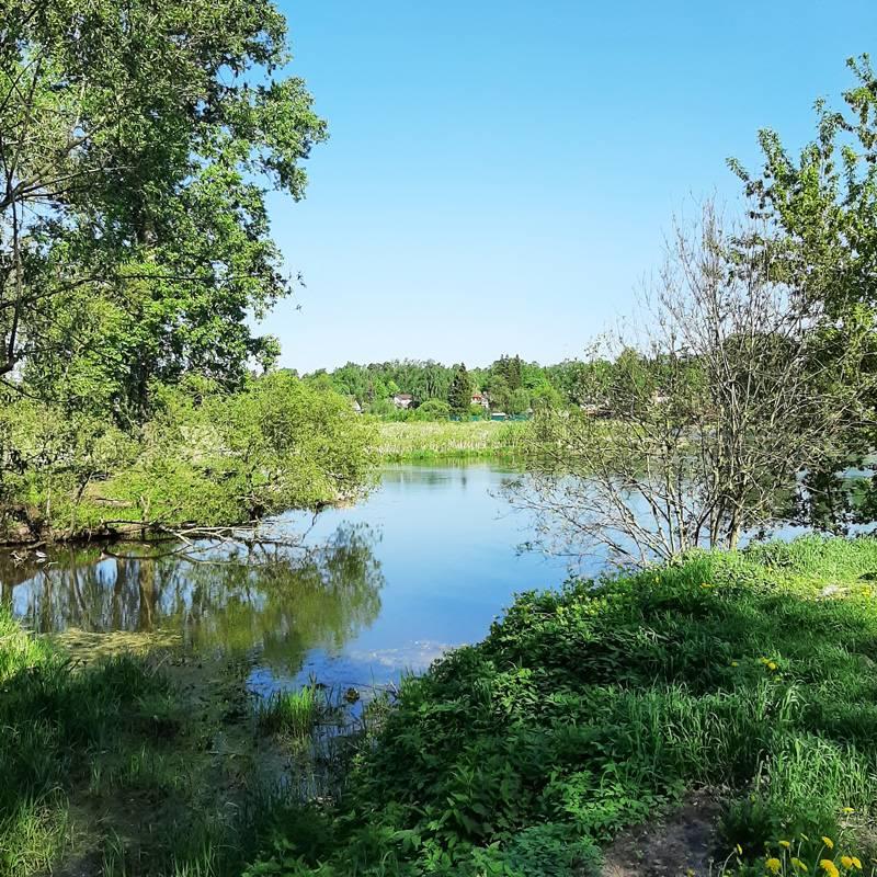 Рядом с ЖК течет река Клязьма — здесь очень живописно, особенно летом