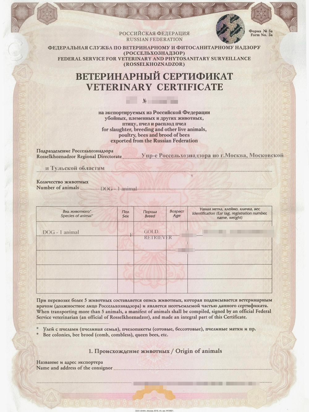 Так выглядит международный ветеринарный сертификат. Информация о животном указана на английском языке. Источник: зоосалон «Филимон»