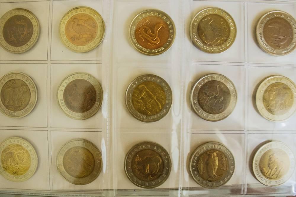 Цикл памятных монет «Красная книга» был начат в 1991году и продолжался до 1994. Полная серия насчитывает 15 выпусков, посвященных редким видам животных. Нам удалось собрать всю серию
