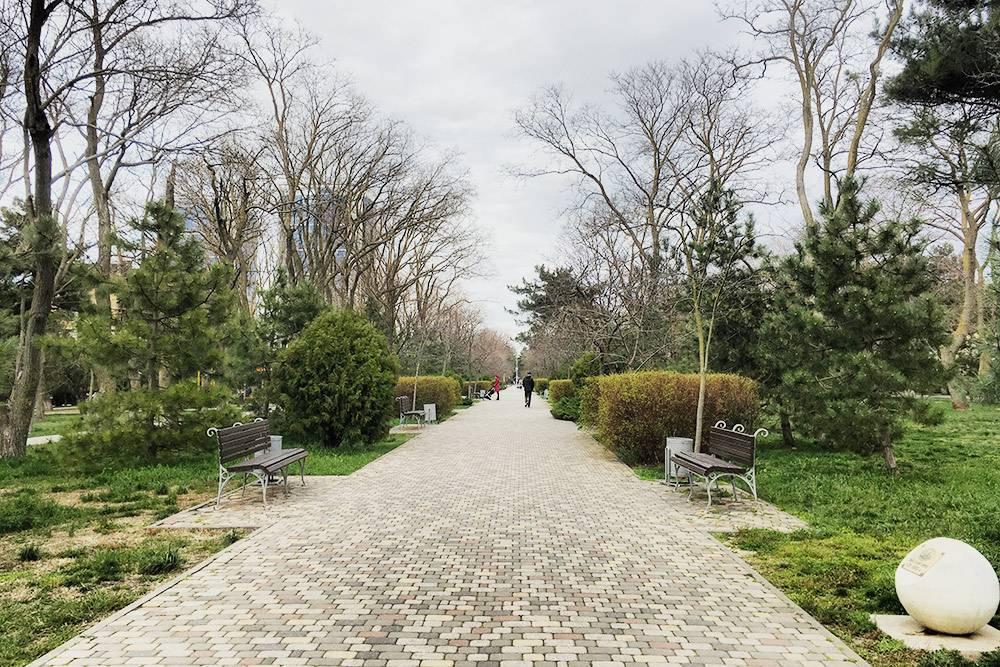 Сквер имени Гудовича тянется через пять кварталов