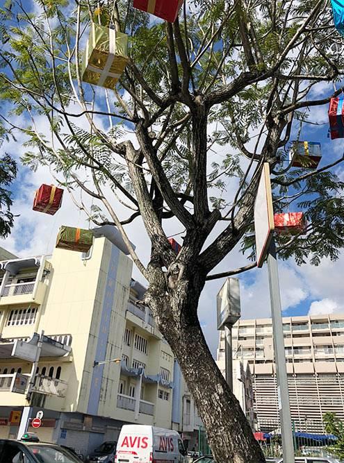 Вянваре надеревьях вцентре города висят новогодние украшения. Это выглядит необычно