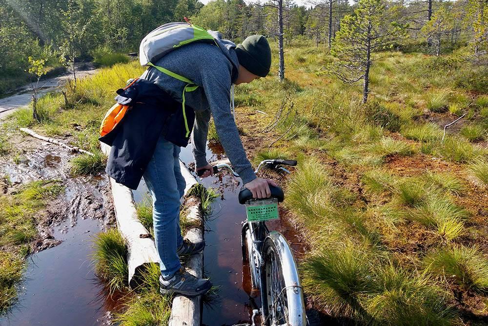 По пути много болотистых мест. Кто-то заботливый проложил тропу из бревен, но ехать по ней на велосипеде невозможно. Велосипед придется нести на себе