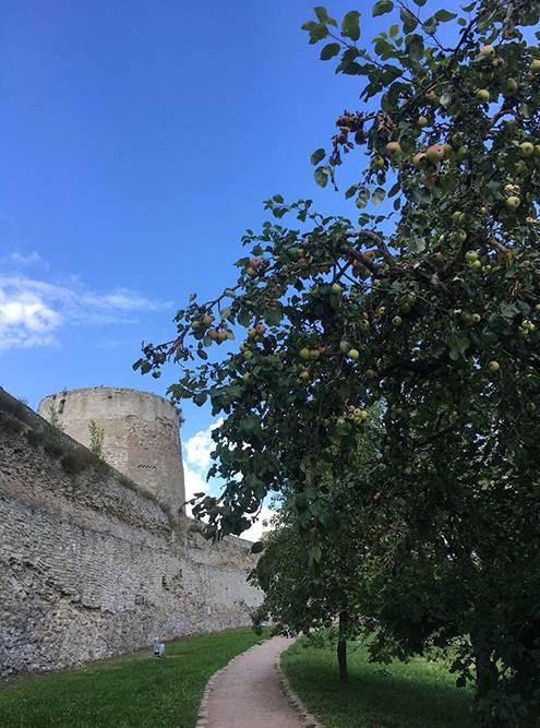 Вокруг Изборской крепости расположен парк