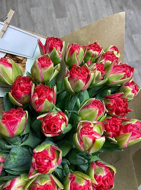 Пока Т. в душе, пересчитываю тюльпаны — 41штука
