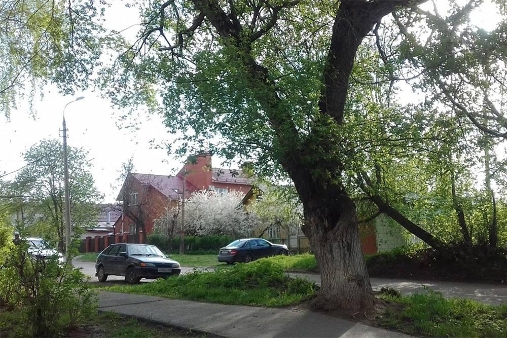 В центре Коломны по соседству с хрущевками находятся частные дома. Некоторые постройки сохранились с 18—19 века. Это вид на дорогу возле нашего дома