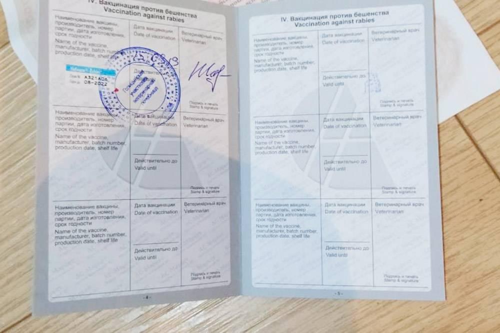 Международный ветеринарный паспорт Лаки