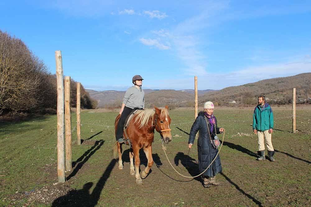 Частная конюшня в Синапном. Ребята проводят мастер-классы по дружбе с лошадьми