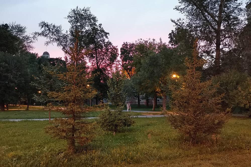 На самом деле закат был гораздо красивее