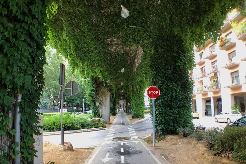 Велодорожка поджелезнодорожными путями в центре города