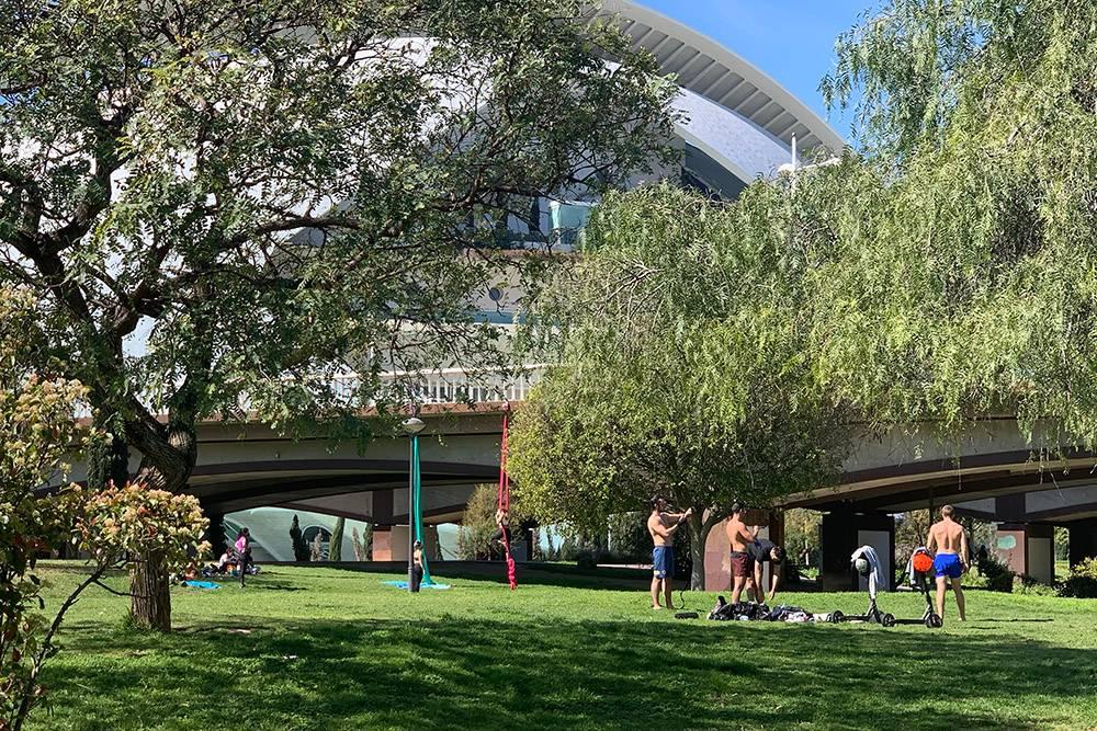 Парк в русле Турии — вечнозеленый и цветущий. По нему можно пересечь весь город. Еще здесь занимаются спортом: есть даже йога в гамаках подмостами