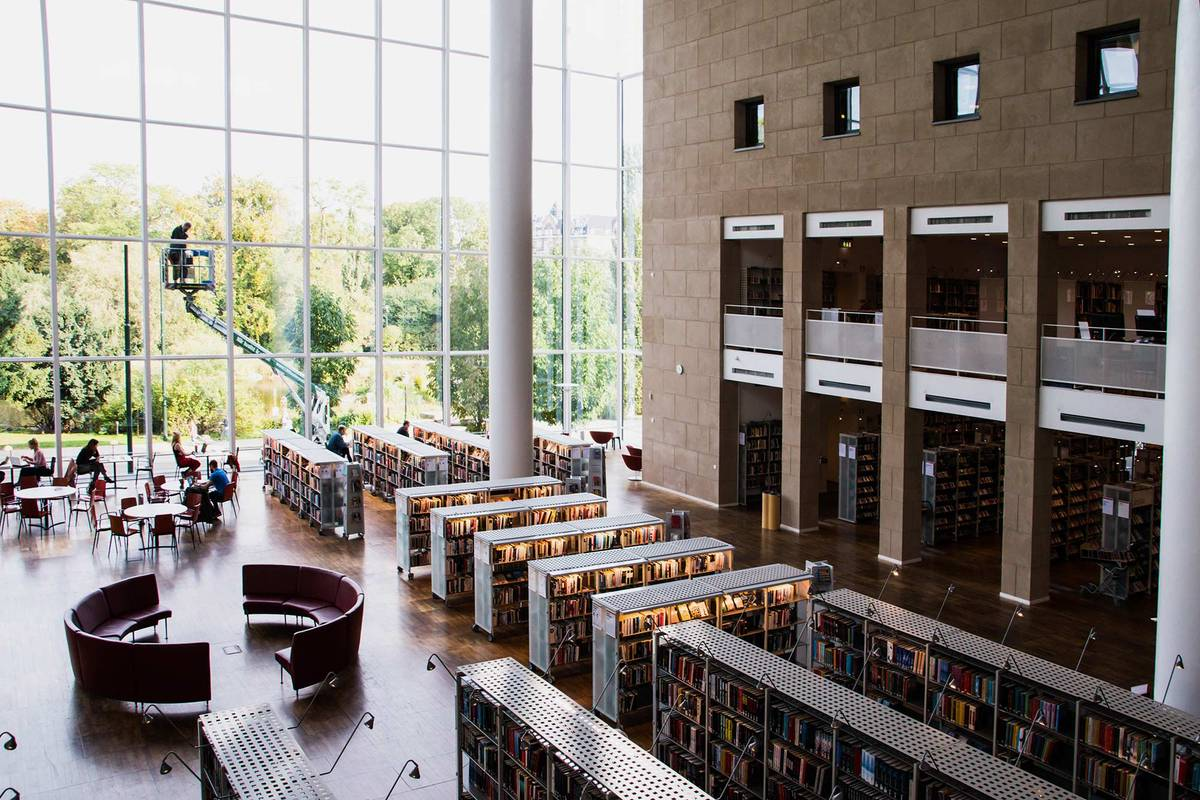 Из библиотеки открывается красивый вид на сад