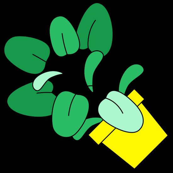 Говорят, растения могут улучшать воздух. Правда?