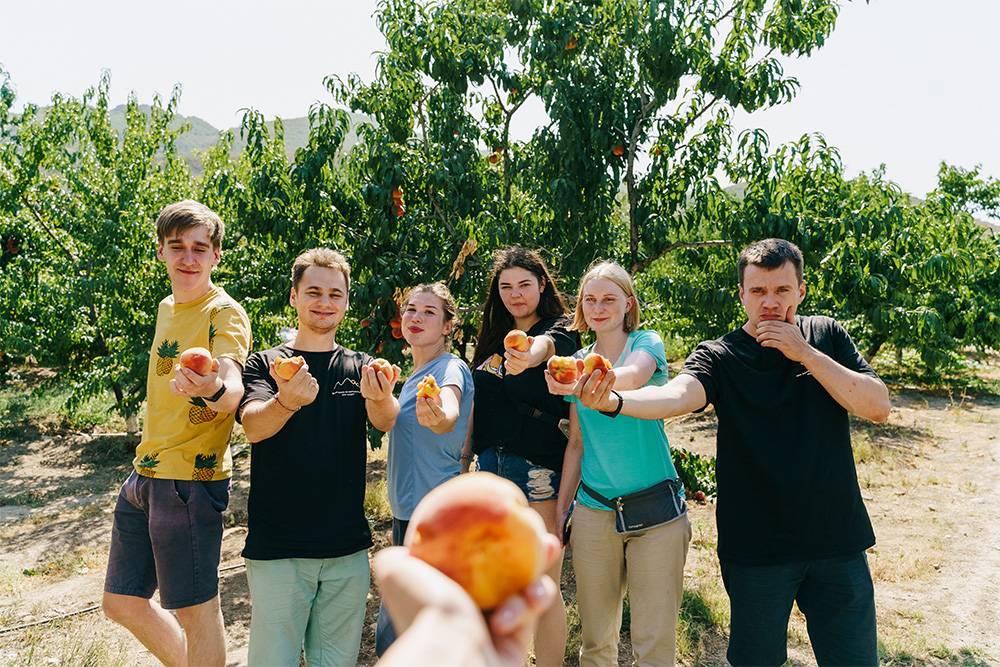 Одна из моих групп в персиковом саду. Собираем фрукты к обеду