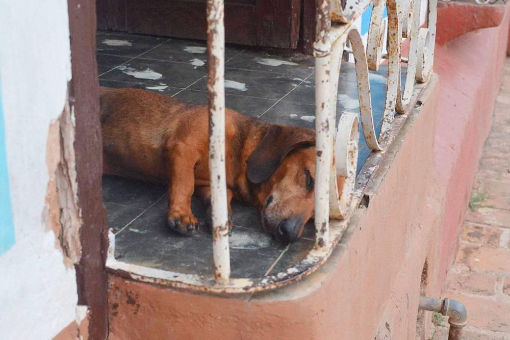 Днем на Кубе сиеста, и города замирают. Магазины и кафе могут быть закрыты