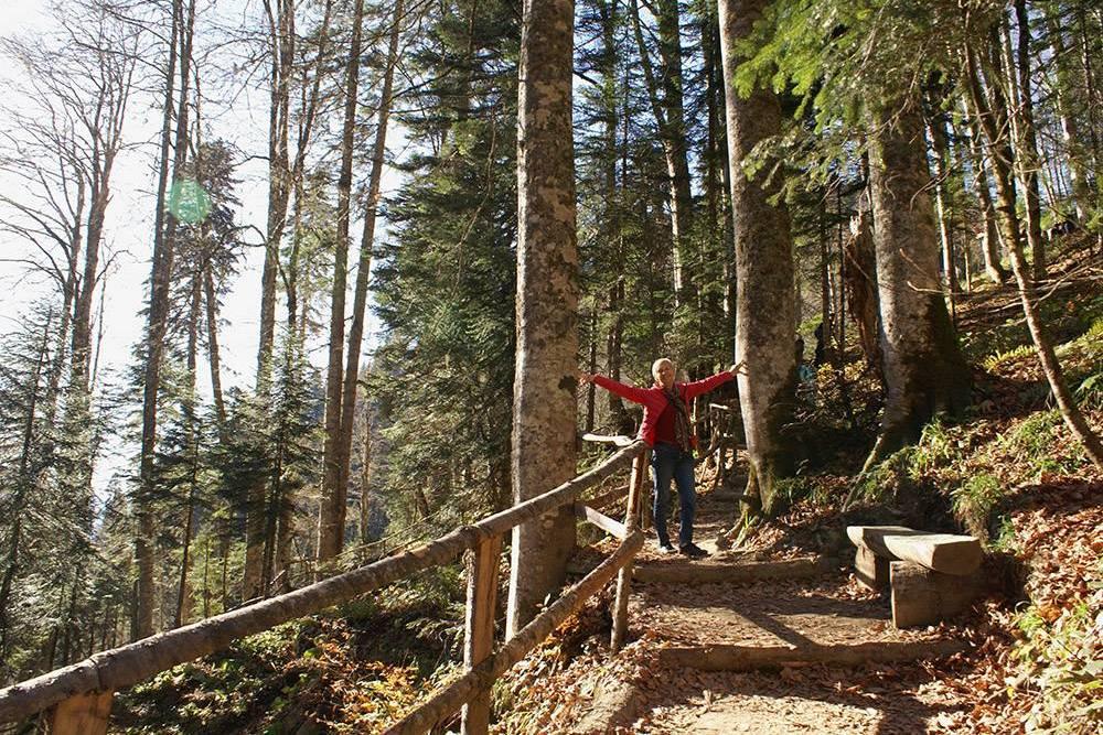 Я ходила в парк водопадов с мамой. Ей 70 лет, и она легко прошла маршрут с небольшими остановками на отдых