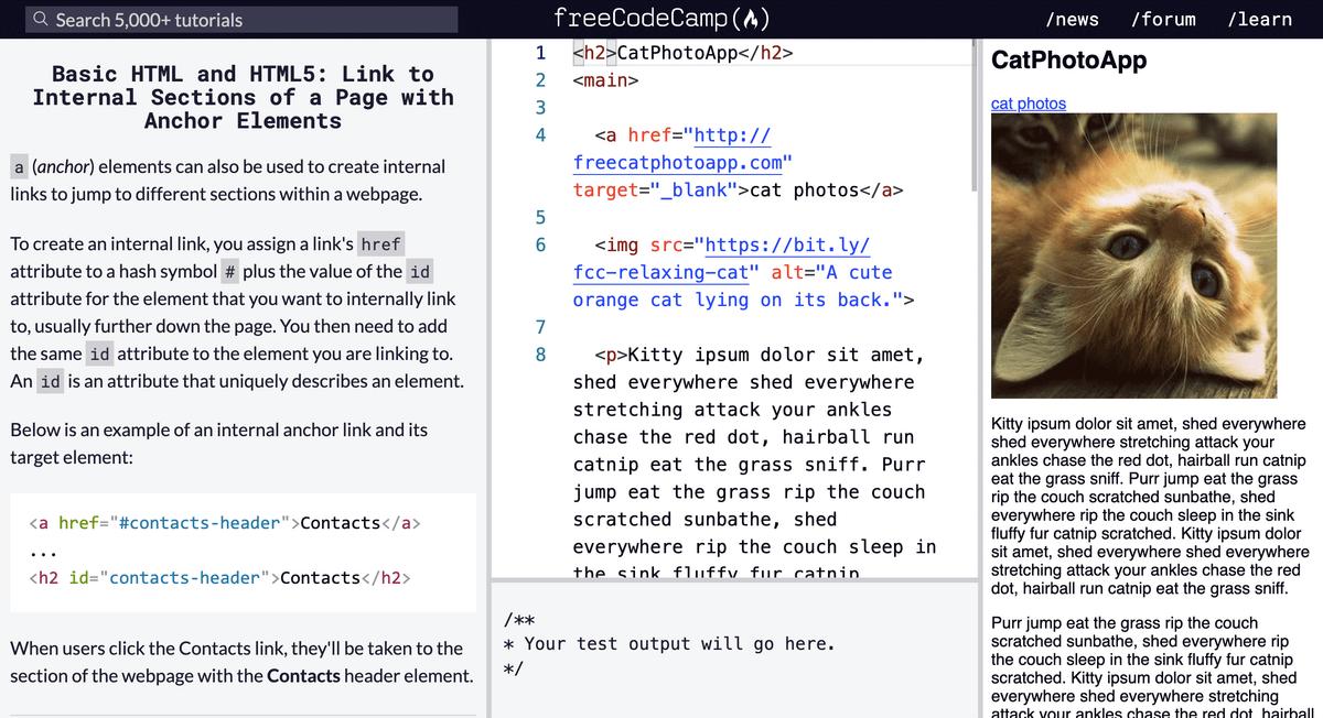 Так выглядит урок на сайте Freecodecamp. Это стандартный интерфейс любого курса по основам программирования: слева — блок с теорией, по центру — терминал, где пишется код, а справа — окно, в котором выводится результат исполнения вашего кода
