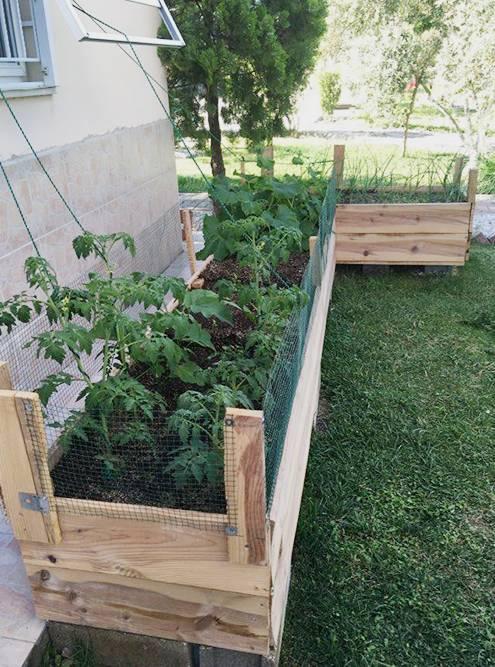 Во время карантина муж сделал огород в ящиках. Теперь мы не покупаем салат, руколу, зелень и некоторые овощи
