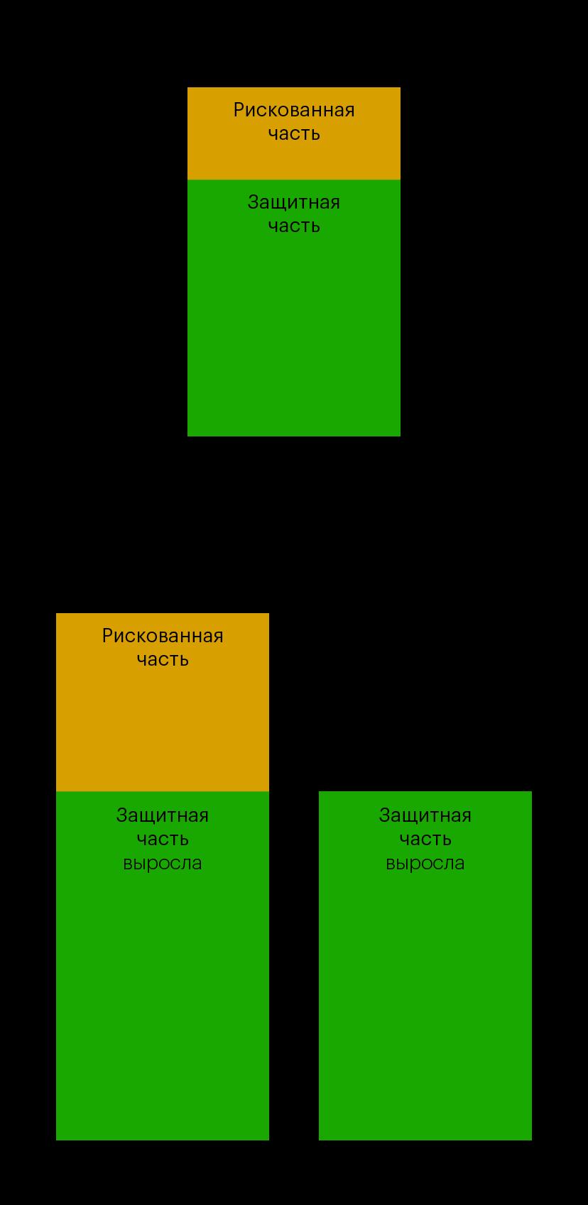 Схема работы защиты капитала