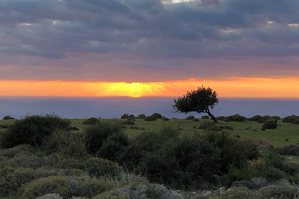Закат на побережье у деревни Писсури