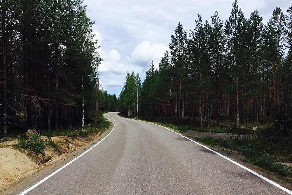Финские дороги отличного качества, а по обеим сторонам — сосновый лес, озера и болота