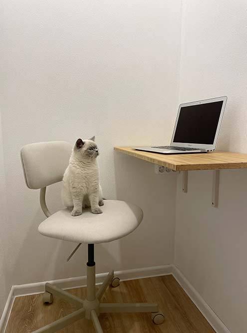 А сейчас это миниатюрный кабинет, который нравится не только мне