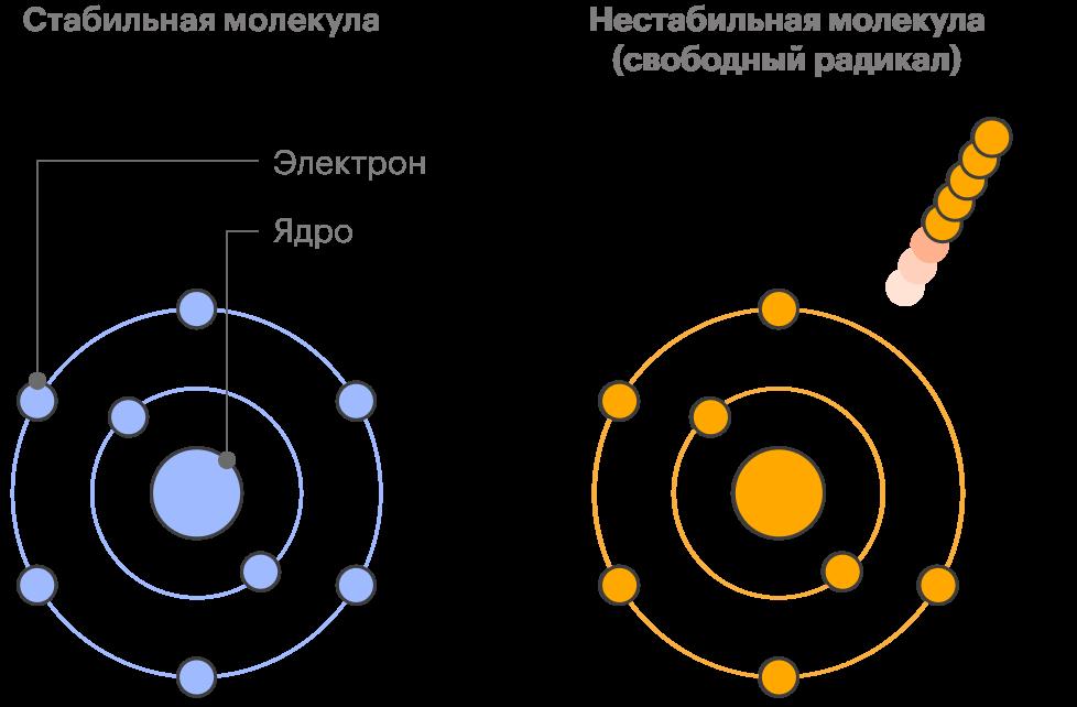 Слева у каждого электрона есть пара — молекула стабильная. Справа молекула, которая потеряла один электрон и стала нестабильной или свободным радикалом