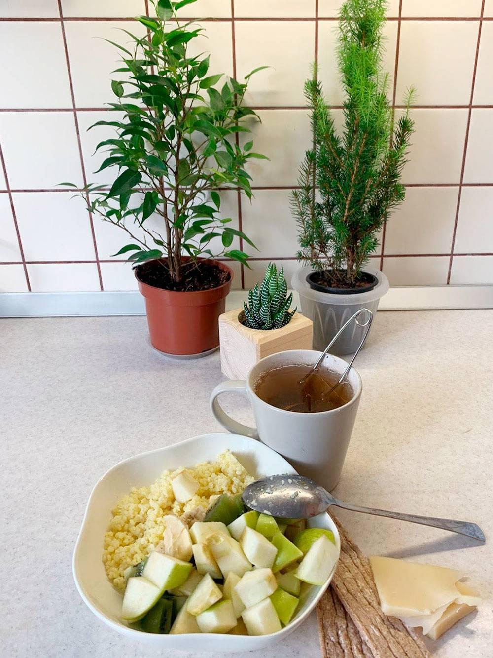 Мой завтрак. Надобы пересадить растения в горшки побольше, чтобы лучше росли