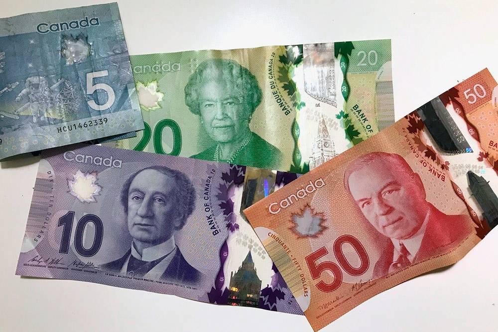 Канадские доллары пластиковые, их не получится порвать и можно даже стирать