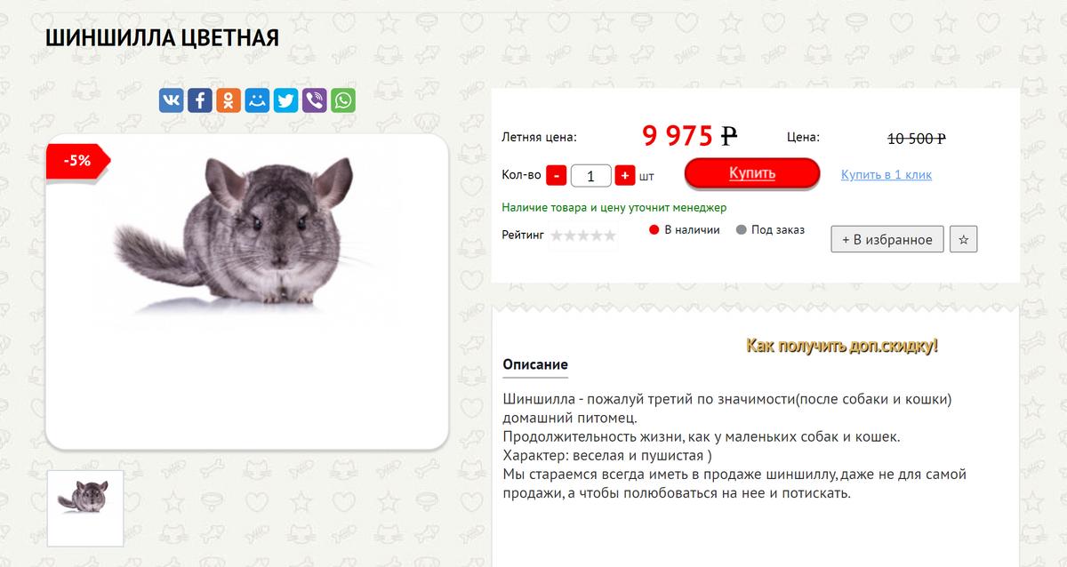 В Новосибирских зоомагазинах шиншиллы только стандартного окраса. Цена завышенная — обычно такие стоят от 2000<span class=ruble>Р</span>