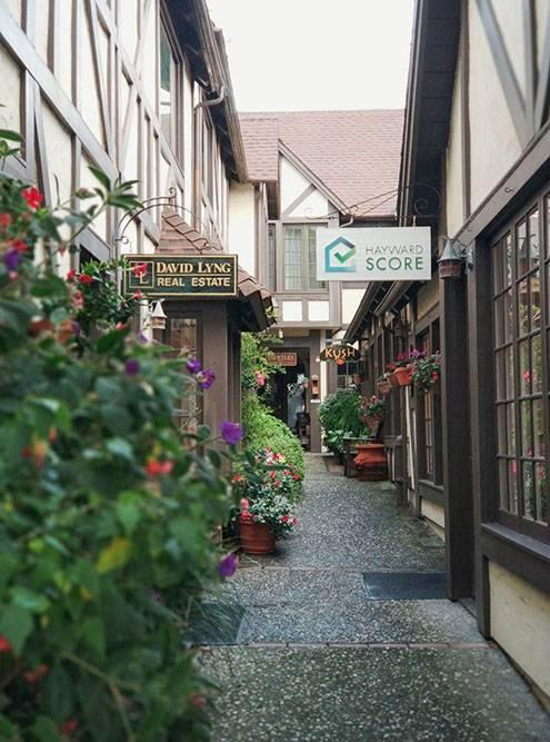 Улицы узкие, как в Европе, и на них много зелени