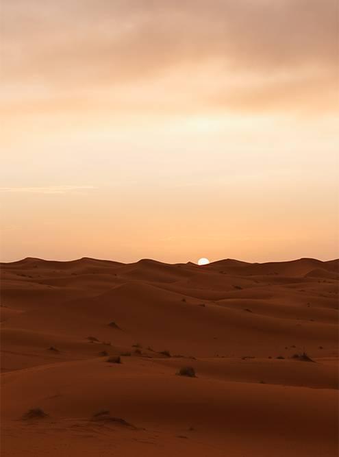 Когда я приезжала в пустыню, ночью там было холодно — до +5 °С. Советую брать теплые вещи