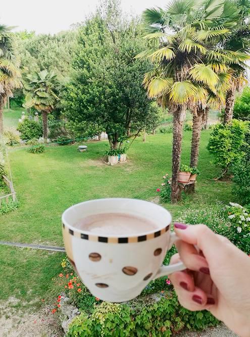 Вид на сад в Сузегане. По утрам мы пили кофе на балконе и слушали пение птиц, а вечерами любовались светлячками в виноградниках вокруг дома