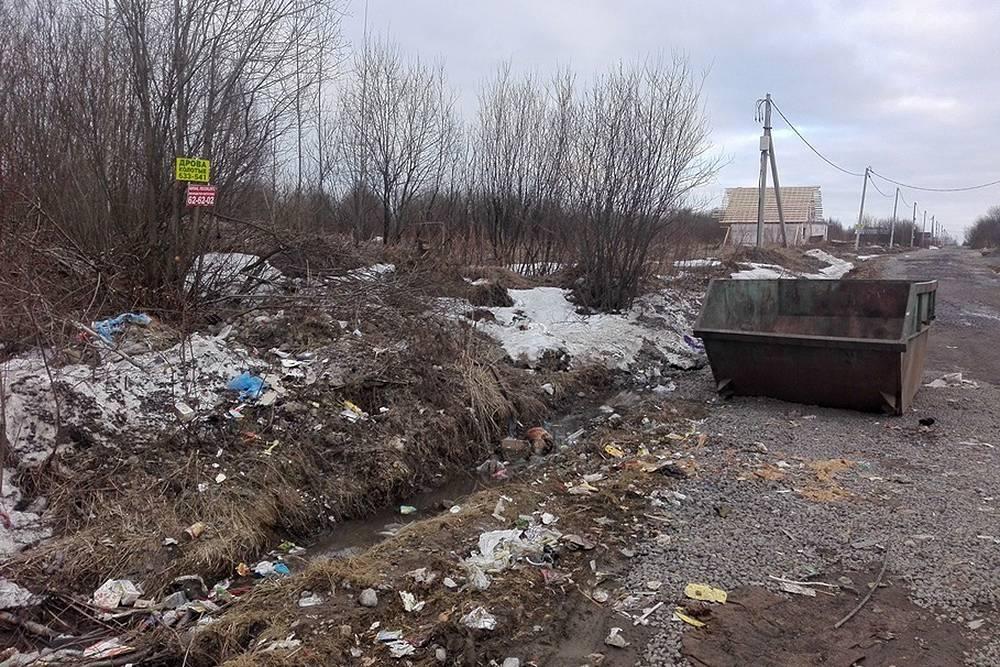 Так все выглядело в начале мусорной реформы. Бункер недавно опустошили, но вокруг него настоящая свалка. Не этого мы ждали, когда покупали дом ближе к природе