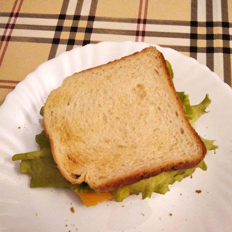 Думаю, что когда-нибудь мне надоест есть бутерброды