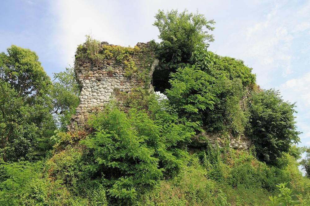 Почти весь замок оплели растения. Это придает ему еще более древний и таинственный вид. Источник: v-georgia.com
