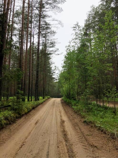 Дороги для поездки мы выбираем грунтовые, потому что там меньше машин и людей и больше природы