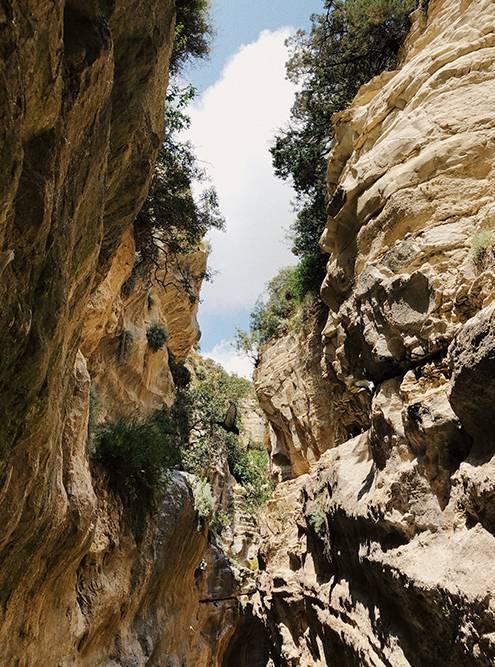 К ущелью Авакас ведет живописная тропа