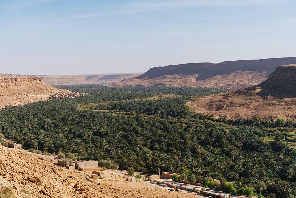 В долинах рек всегда много растительности, а на плато — сухо и безжизненно
