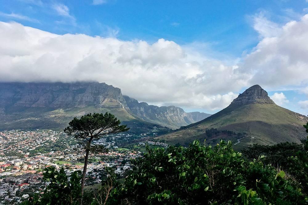 Львиная голова справа, Столовая гора слева. Это вид с Сигнального холма — еще одной возвышенности в центре Кейптауна. Заехать туда можно на машине