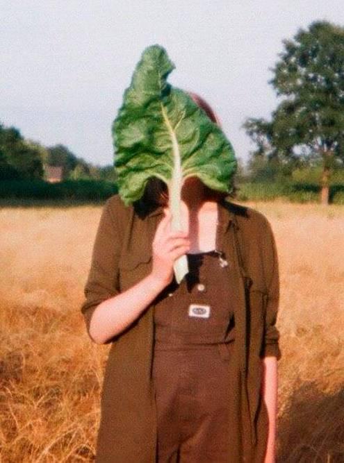 Устроили фотосессию в поле: пришлось одолжить комбинезон и рубашку у одной из девушек
