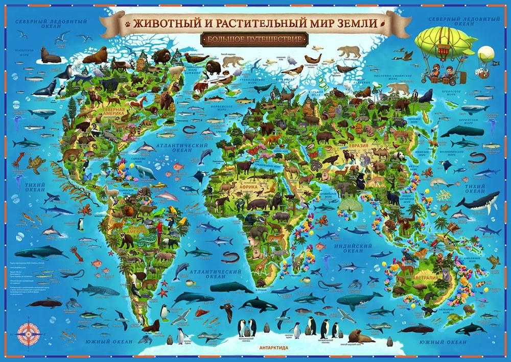 Возле такой карты дети стояли по полчаса, придумывали игры: например, кто быстрее найдет гренландского кита