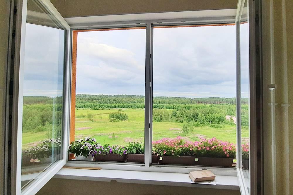 Из нашего окна видно лес, поэтому есть ощущение размеренной загородной жизни. Приэтом в любой момент можно добраться до Санкт-Петербурга